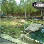 Cincinnati Zoo Photos